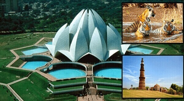 Golden Triangle with Tiger Safari (5N | 6D) Delhi-Agra-Ranthambore-Jaipur